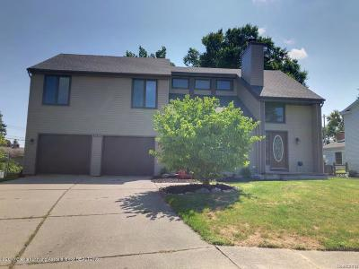 Lansing Single Family Home For Sale: 1528 Lotipac Place