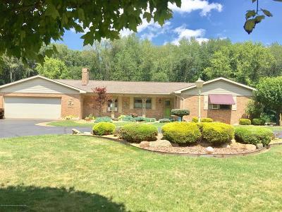 Calhoun County Single Family Home For Sale: 29175 Albion Road