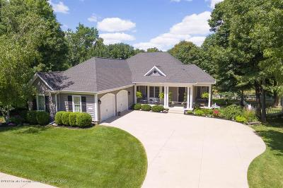 Clinton County Single Family Home For Sale: 15011 Seniors Court