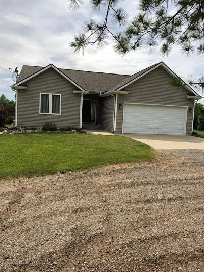 Clinton County Single Family Home For Sale: 10102 Hollister Road
