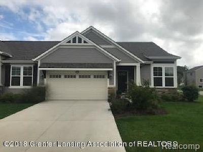 Ottawa County Condo/Townhouse For Sale: 3246 Braeburn Drive