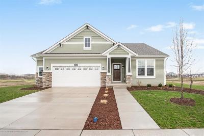Lansing Single Family Home For Sale: 2829 Ballybunion Way