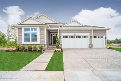 Lansing Single Family Home For Sale: 2991 Medinah Drive