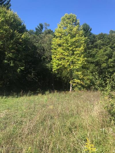 Kalamazoo County Residential Lots & Land For Sale: 5257 Douglas Avenue