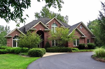 Clinton County Single Family Home For Sale: 3830 Winsome Way