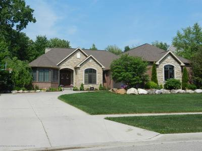 Clinton County Single Family Home For Sale: 6430 Heathfield Drive