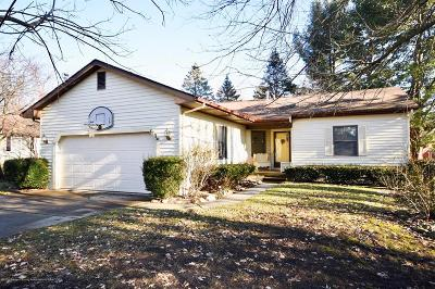 Dewitt Single Family Home For Sale: 410 Manchester Drive