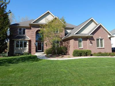 Meridian Charter Twp Single Family Home For Sale: 6016 Sleepy Hollow Lane