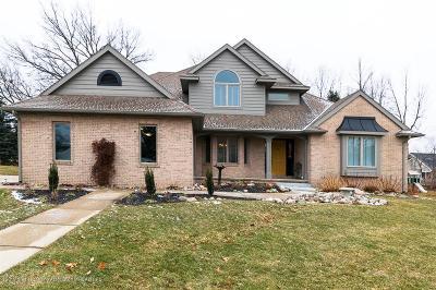Dewitt Single Family Home For Sale: 903 Sandhill Drive