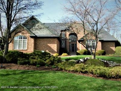 Meridian Charter Twp Single Family Home For Sale: 1920 Belwood Drive
