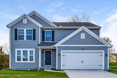 Dewitt Single Family Home For Sale: 1136 River Oaks Drive