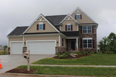 Dewitt Single Family Home For Sale: 1185 Verbena Lane