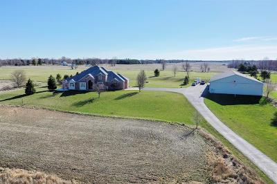 Clinton County Single Family Home For Sale: 13185 S Wright Road