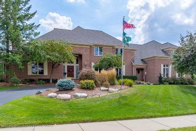 Meridian Charter Twp Single Family Home For Sale: 2571 Meadow Woods Drive