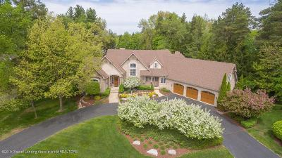 Meridian Charter Twp Single Family Home For Sale: 2448 Pine Hollow Drive