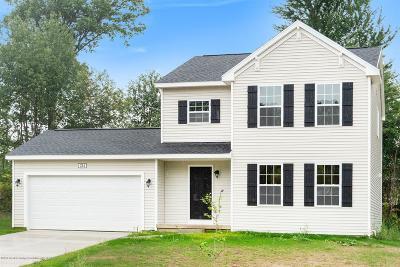 Dewitt Single Family Home For Sale: 234 Noleigh Lane