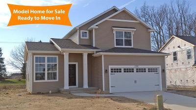 Dewitt Single Family Home For Sale: 1132 River Oaks Drive