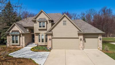 Dewitt Single Family Home For Sale: 306 W Spring Meadows Lane