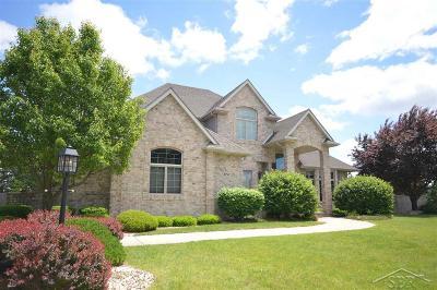 Saginaw Single Family Home For Sale: 3757 Sundridge