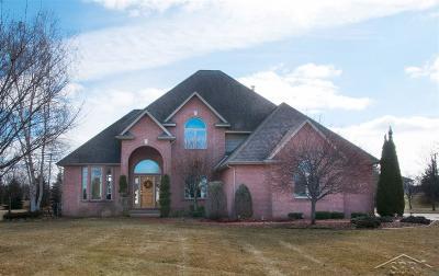 Saginaw MI Single Family Home For Sale: $419,000