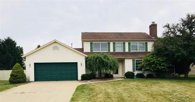 Saginaw Single Family Home For Sale: 6895 Vista