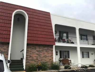 Saginaw Condo/Townhouse For Sale: 9150 Greenway