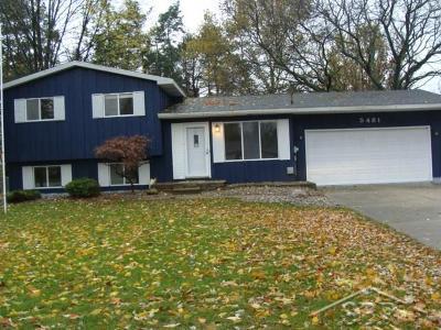 Saginaw Single Family Home For Sale: 5481 Brockway Road