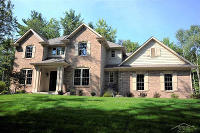 Midland Single Family Home For Sale: 3339 E Shady Ridge Ln