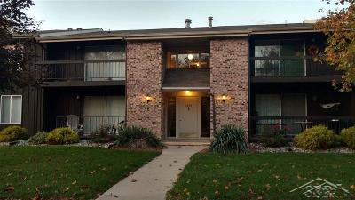 Saginaw Condo/Townhouse For Sale: 6131 Western #45