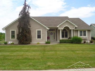 Saginaw Single Family Home For Sale: 1592 Palomino