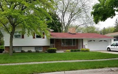 Saginaw Single Family Home For Sale: 1125 Washburn Pl W