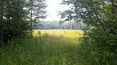 Residential Lots & Land For Sale: 1 Hammett