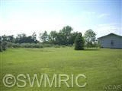 Newaygo County Residential Lots & Land For Sale: 204 Baden Place #9