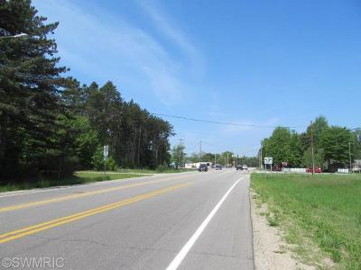 Muskegon County, Newaygo County, Oceana County, Ottawa County Residential Lots & Land For Sale: 5441 Airline Road
