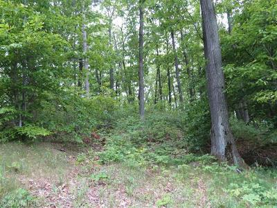 Oceana County Residential Lots & Land For Sale: Silver Vista Lane #3