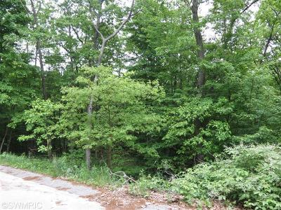 Oceana County Residential Lots & Land For Sale: Silver Vista Lane #1