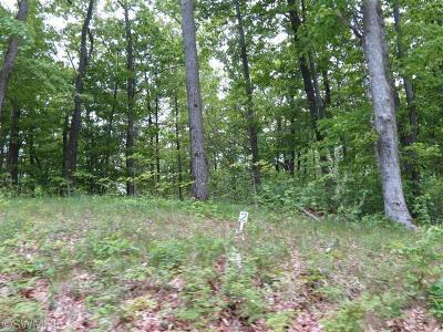 Oceana County Residential Lots & Land For Sale: Silver Vista Lane #2