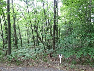 Oceana County Residential Lots & Land For Sale: Silver Vista Lane #7