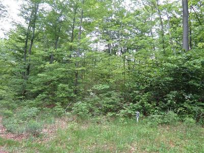 Oceana County Residential Lots & Land For Sale: Silver Vista Lane #8