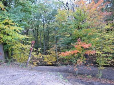 Holland, West Olive Residential Lots & Land For Sale: 4612 66th Street
