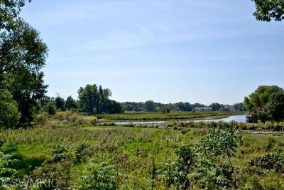 New Buffalo Residential Lots & Land For Sale: 11825 Riviera Drive