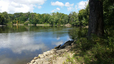 Sodus Residential Lots & Land For Sale: 3095 River Road