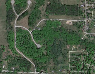 Big Rapids Residential Lots & Land For Sale: 5 Mitchell Creek Trail