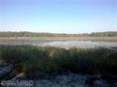Muskegon County, Oceana County, Ottawa County Residential Lots & Land For Sale: Round Lake Drive