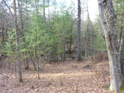 Residential Lots & Land For Sale: 9210 S 124th Avenue