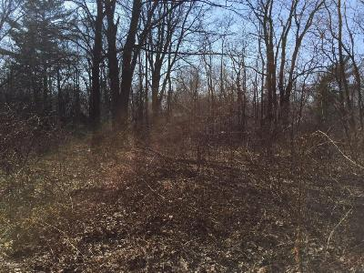 Residential Lots & Land For Sale: 6154 Washington