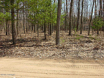 Canadian Lakes MI Residential Lots & Land For Sale: $2,800