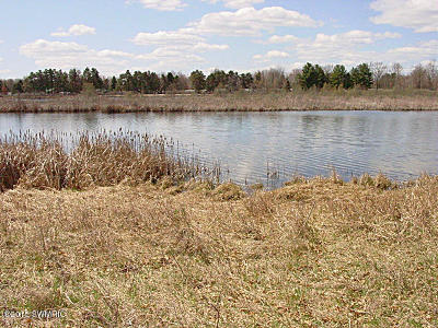 Canadian Lakes MI Residential Lots & Land For Sale: $6,500