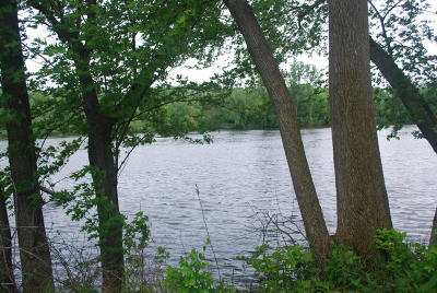 Buchanan Residential Lots & Land For Sale: Lot 5 N Deer Path