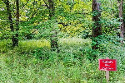 Lakeside Residential Lots & Land For Sale: 2 Acorn Path #2